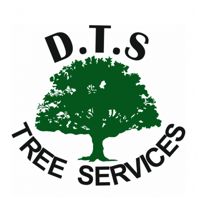 DTS Tree Services